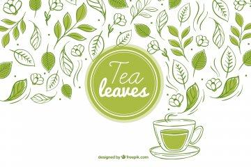 moringa thee ervaringen